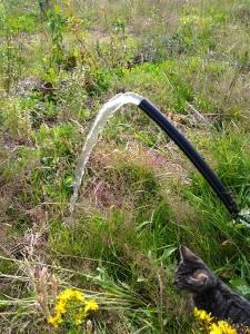 2014 0708 Et l'eau jaillit du tuyau