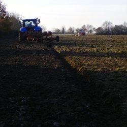 Semis blé-féverole